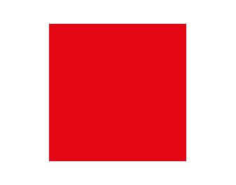 corporate vision icon